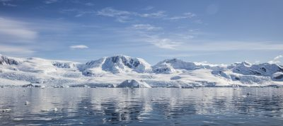 Antarctica's surrounding waters are home to some of the healthiest marine ecosystems on Earth, but efforts to establish conservation areas in the Southern Ocean are being hobbled by political infighting and fishing interests. Image credit: William Kennedy