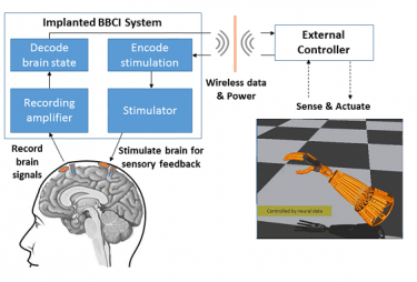 """The UW study is based on the concept of closed-loop """"bi-directional brain-computer interfaces"""" (BBCIs) being developed at the CSNE that can both record from and stimulate the nervous system. They would also allow the brain to directly control prosthetics or other external devices to enhance movement or reanimate paralyzed limbs. Image credit: Center for Sensorimotor Neural Engineering"""