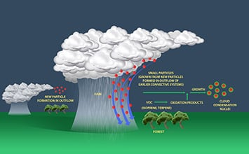 "Scanning the pristine skies above the Amazon rainforest revealed that small aerosol particles that form naturally in the upper atmosphere are carried to the lower atmosphere by rapid downdrafts associated with rainfall. There, volatile organic compounds (VOCs) emitted by trees react with oxidants, and the oxidation products condense on the small particles and make them grow into the ""nuclei"" around which clouds form. Studying this process in a clean environment will help scientists improve their understanding of the effects of industrial era emissions on climate. Credit: Luiz. A. T. Machado, National Institute for Space Research, São José dos Campos, São Paulo, Brazil"
