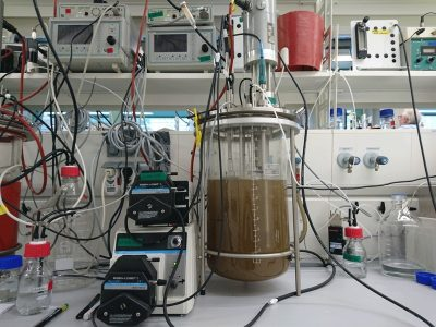 One of the bioreactors, in which Kartal and his colleagues found the rust-munching microbes. Credit: B. Kartal
