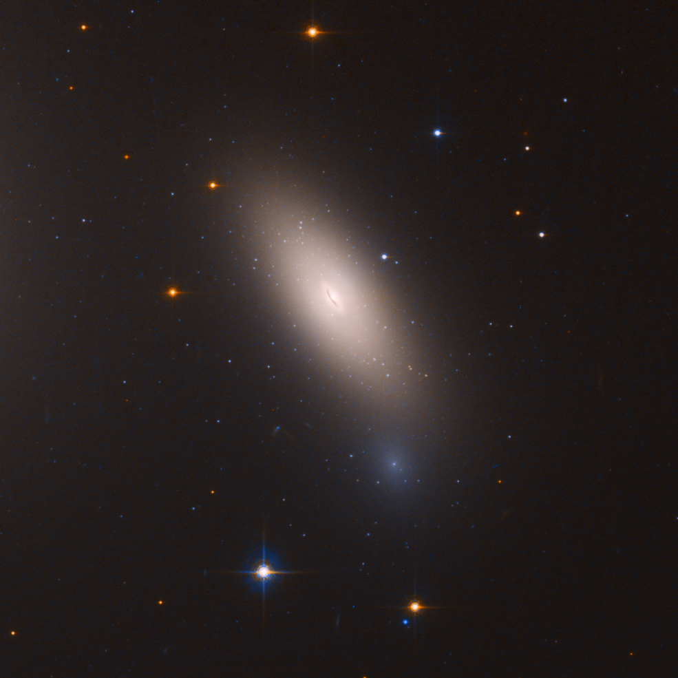 Arrested Development Hubble Finds Relic Galaxy Close To