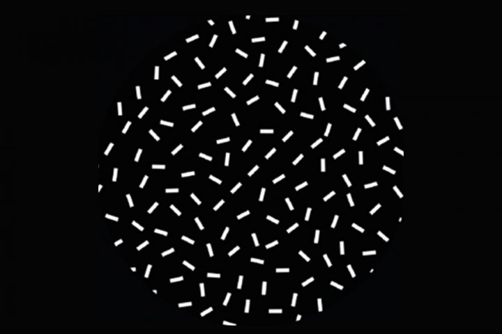 Over time, monkeys get better at spotting a straight line within a disordered picture. Here, the line consists of five dashes. Can you see it? Image credit: Rockefeller University