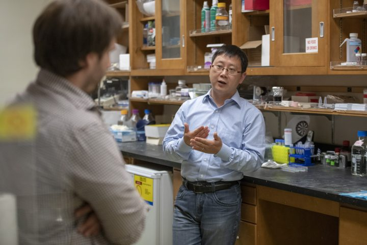 Assistant Professor Xiaoke Chen, right, discusses the functions of the paraventricular thalamus with researcher Greg Nachtrab, one of his co-authors on a new paper. (Image credit: L.A. Cicero / Stanford University)