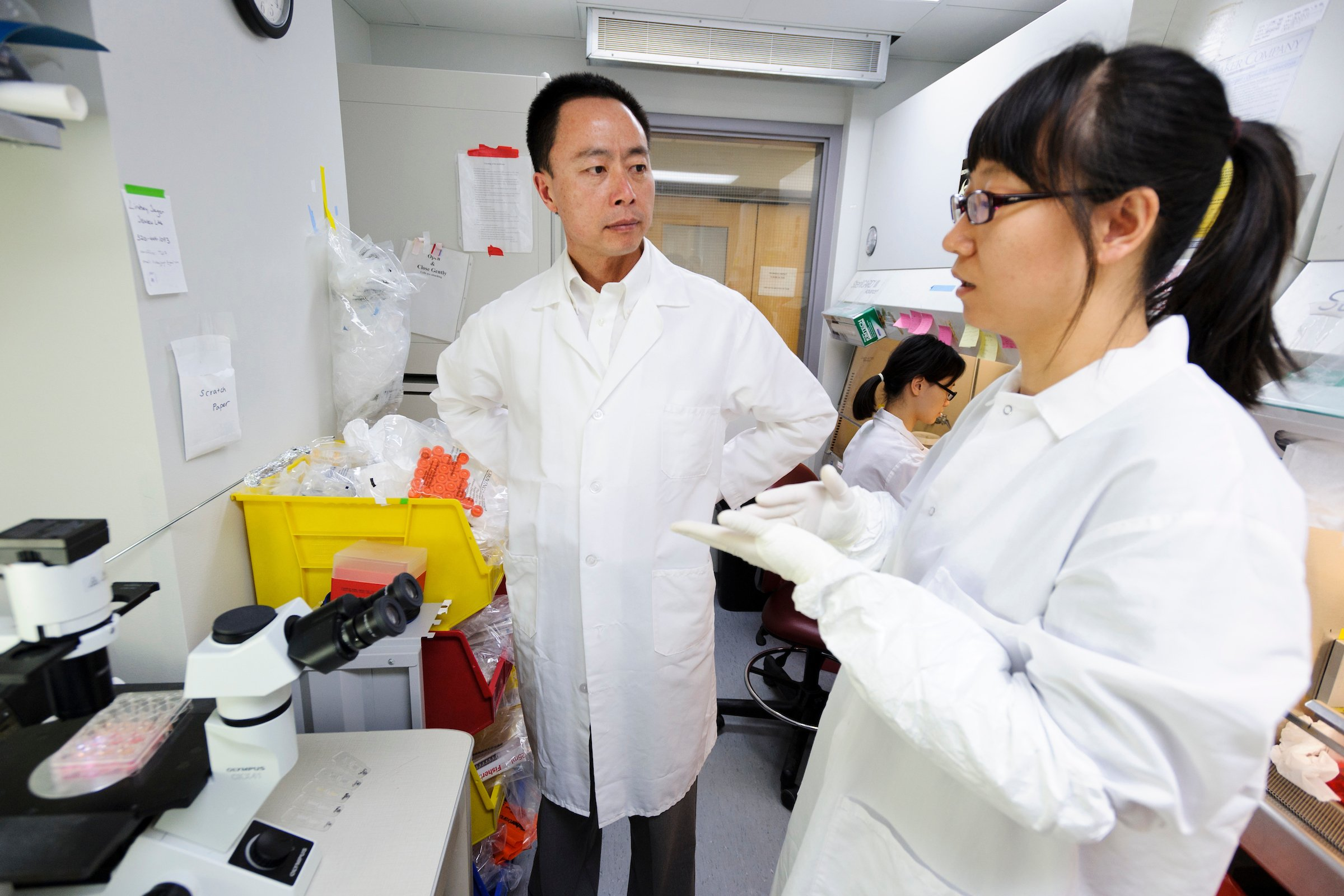 Su-Chun Zhang, professor of neuroscience in the School of Medicine and Public Health, talked with postdoctoral student Lin Yao as she prepared stem-cell cultures in Zhang's lab at UW–Madison's Waisman Center in 2013. Photo: Jeff Miller, University of Wisconsin-Madison
