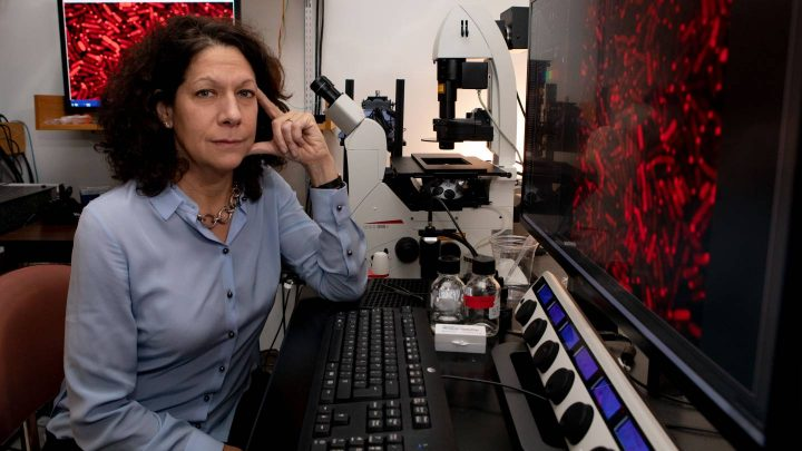 Bonnie Bassler poses in a laboratory at Princeton, where she is the Squibb Professor in Molecular Biology and chair of the Department of Molecular Biology. She is also a Howard Hughes Medical Institute Investigator. Photo by Denise Applewhite, Office of Communications