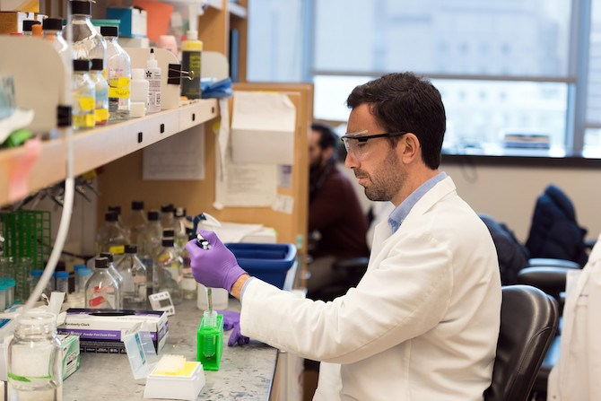 """""""If we see microglia in brain disease, are they part of the problem or part of the solution?"""" asks Timothy Hammond. Image: Michael Goderre / Harvard Medical School"""