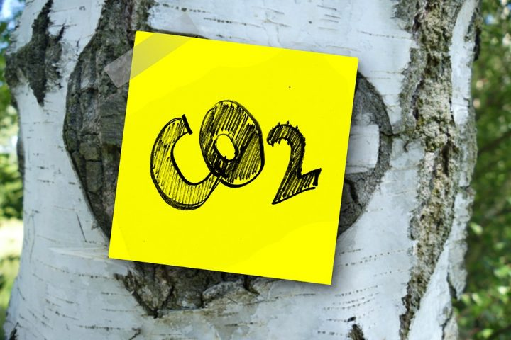 Carbon dioxide - label on a tree. Image credit: geralt via Pixabay, CC0 Public Domain