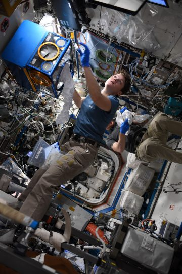 "NASA astronaut Anne Mcclain working within a Mouse Habitat Unit. ""@ISS_Research is really phenomenal; every day we get to play a part in learning about our universe, our Earth, and the creatures that live on it. Getting to do science on the ceiling? Well, now that's just cool!"" she tweeted. Credits: NASA"