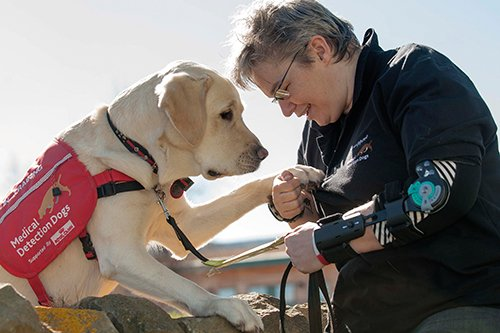 Claire Pesterfield holding her dog Magic's paw. He's a medical alert assistant dog and has been trained to detect a minute shift in Claire's blood sugar levels. She thinks he's alerted and potentially saved his life 4,500 times in the five years they've been together. Image credit: Trevor Martin, University of Bristol