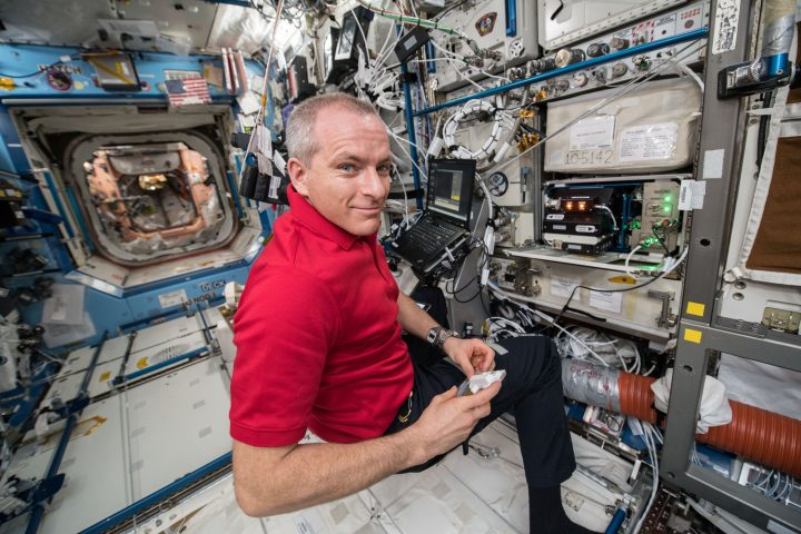 David Saint-Jacques, of the Canadian Space Agency, completes the Bone Densitometer calibration in support of the Rodent Research-8 investigation. Credits: NASA