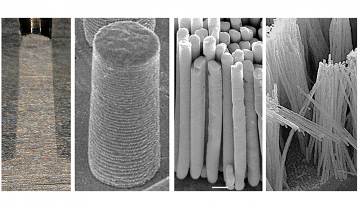 Silver nanorods made with thermomechanical molding, ranging in size from (left to right) 0.57 millimeters, 10 micrometers, 375 nanometers, and 36 nanometers. Image credit: Jan Schroers Lab