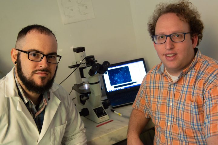 Rice University graduate student Joseph Massey, left, and bioscientist Aryeh Warmflash led a study that determined protein signaling in embryos is far more complex than previously thought, as cells depend a great deal on context to determine their fate. (Credit: Jeff Fitlow/Rice University)