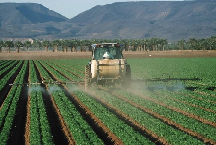 Spraying pesticides on lettuce. Image credit: Jeff Vanuga, NRCS / Public Domain