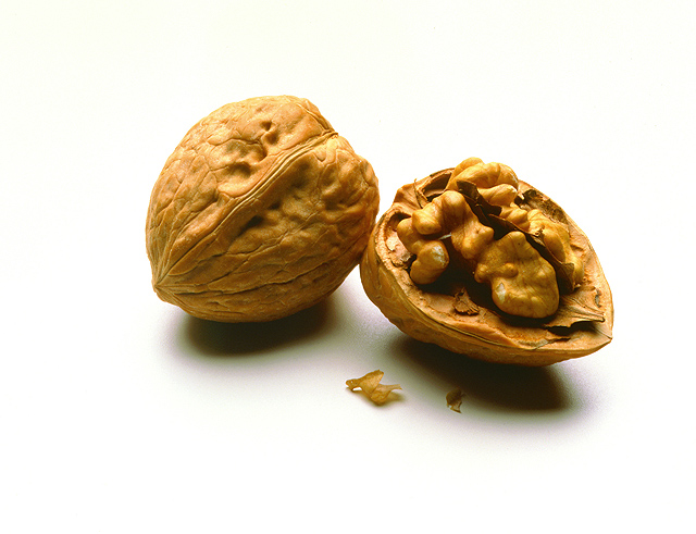 A unique approach to sequencing the walnut genome could lead to better walnut varieties and a better understanding of the genetic blueprints of almonds, pecans, pistachios and grapes. Image credit: ARS