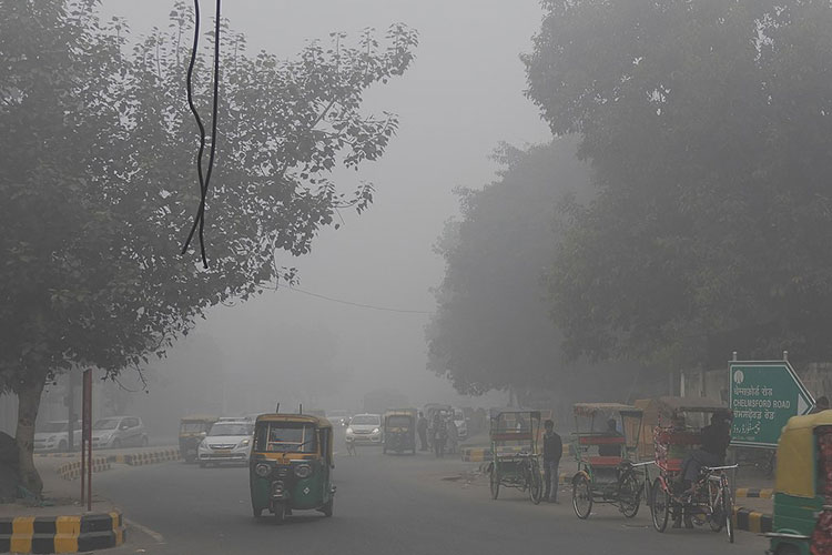 Air pollution in India's capital of New Delhi often soars above 300 ug m-3, nearly twice that experienced by the San Francisco Bay Area during the 2018 Camp Fire. Image credit: Sumita Roy Dutta photo, via Wikimedia Commons CC-BY-SA-4.0