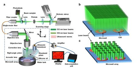The photoacoustic microscopy apparatus used for imaging the metabolic rates of cancer cells. Credit: Caltech