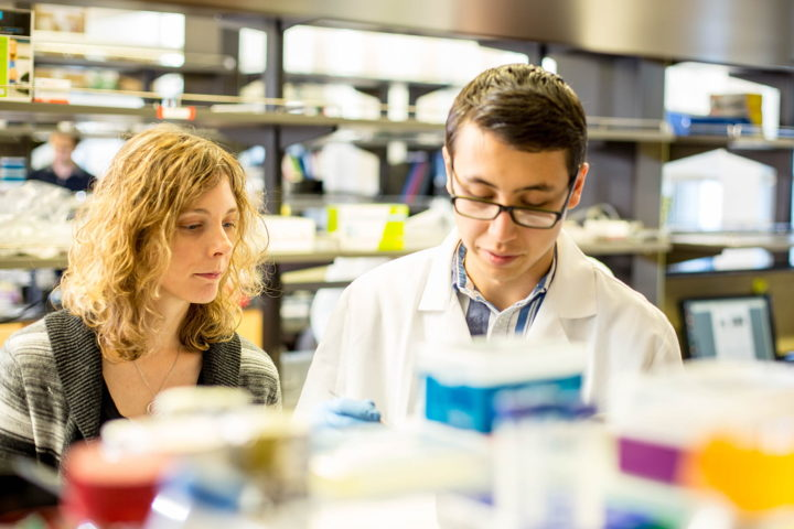 Assistant professor Kelly Stevens (left) and graduate student Daniel Corbett (right) from the University of Washington Departments of Bioengineering and Pathology helped develop a new method to bioprint liver tissue. (Photo by Dennis R. Wise/University of Washington)