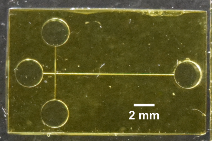 A 3D-printed microchip device separates and detects biomarkers of preterm birth. Image credit: Adapted from Anal. Chem. 2019, DOI: 10.1021/acs.analchem.9b01395