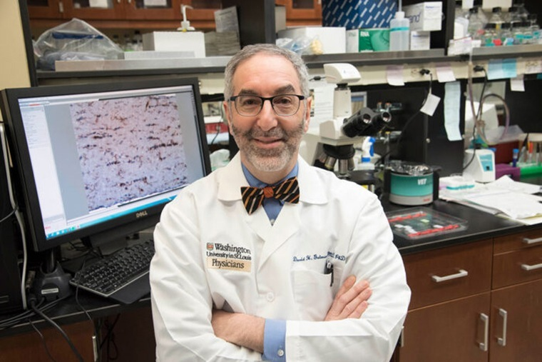 David H. Gutmann, MD, PhD, and colleagues at Washington University School of Medicine in St. Louis studying brain tumors in mice discovered that tumors grow most rapidly if they can enlist the aid of immune cells. The findings suggest that therapies targeting immune cells could potentially treat some kinds of brain tumors.