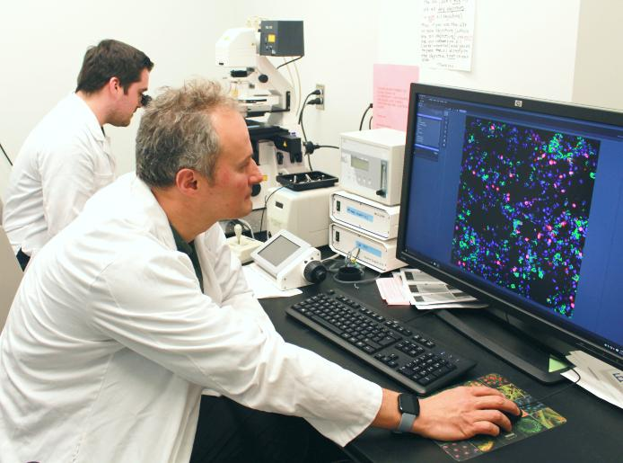 """Dr. Erwan Pernet (back) and Dr. Maziar Divangahi (front) from te Research Institute of the McGill University Health Centre (RI-MUHC), have identified a lipid target to """"tone down"""" the hyper-active immunity to influenza infection. Image credit: McGill University Health Centre"""