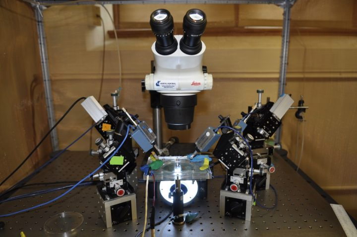 "cientists at the University of Missouri used this microscope to discover that a neuron's own electrical signal, or voltage, can indicate whether the neuron is functioning normally. If that voltage is absent, scientists say everything is ""out of whack."" Image credit: University of Missouri"