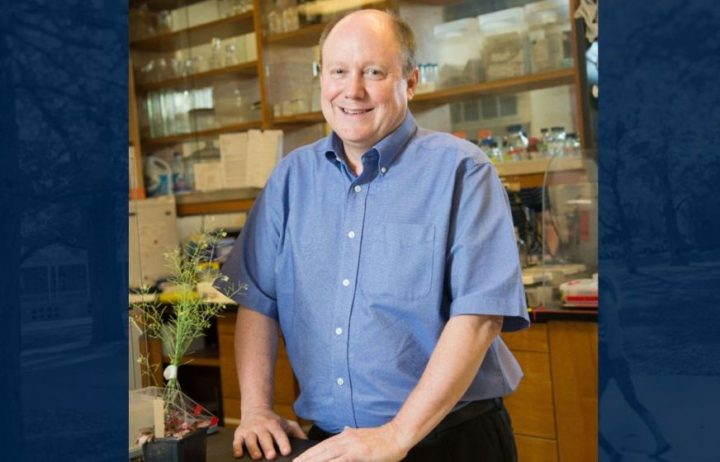 Foundation Professor Jeff Harper has contributed scientific advancements to food security and productivity.