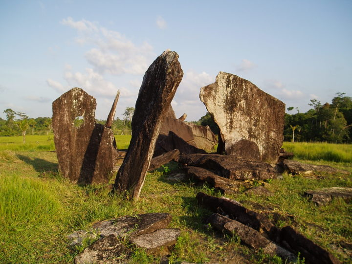 These vertical stones are a megalith site in Amapa, Brazil. This site has been called Amazon Stonehenge. Image credit: Frank Mayle, University of Reading, UK