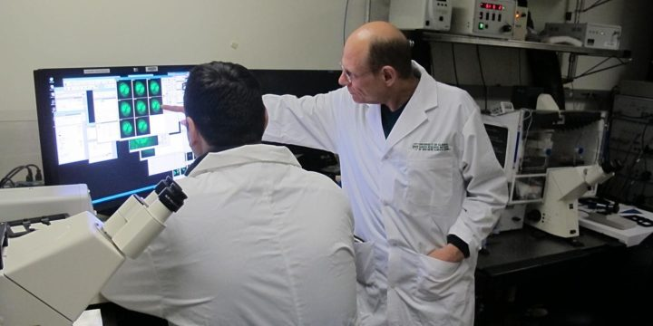 U of A oncologist and cell biologist Michael Hendzel (right) was part of a national research team that identified how a new class of cancer drugs known as PARP inhibitors work, opening the door to better targeted therapy for cancer patients. Image credit: University of Alberta Faculty of Medicine & Dentistry