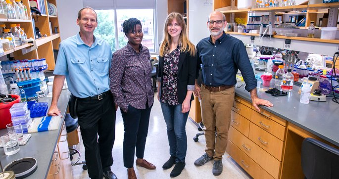 David Cortez, PhD, left, Petria Thompson, Katherine Amidon, Brandt Eichman, PhD, and colleagues are studying how a DNA repair pathway protein shields sites of damage to avoid mutations. (photo by Anne Rayner/VUMC)