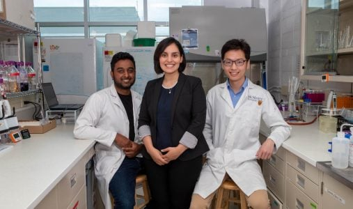 Researchers in Zeinab Hosseini-Doust's lab. From left: Randi Mahabir, Zeinab Hosseini-Doust and Lei Tian. Photo by JD Howell/McMaster University