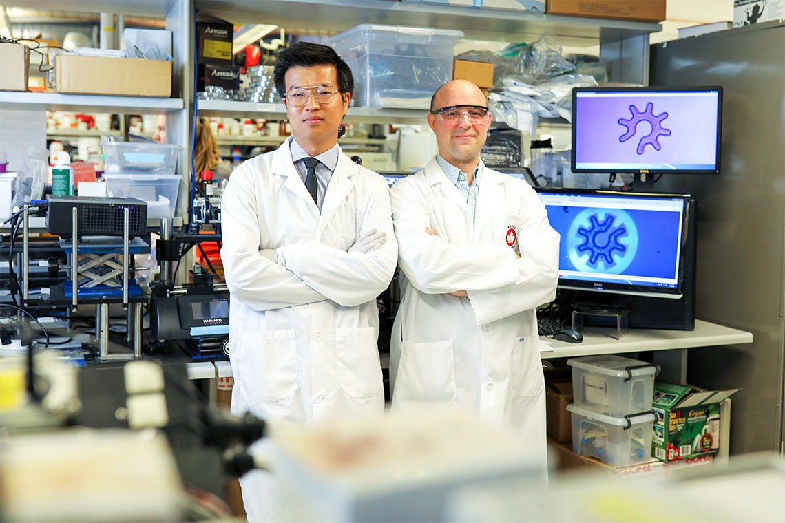 Post-doctoral researcher Shuailong Zhang and Professor Aaron Wheeler have designed microrobots – depicted on the screens behind them – that can be used in conjunction with optoelectronic tweezers to manipulate cell material (photo by Dan Haves/University of Toronto)
