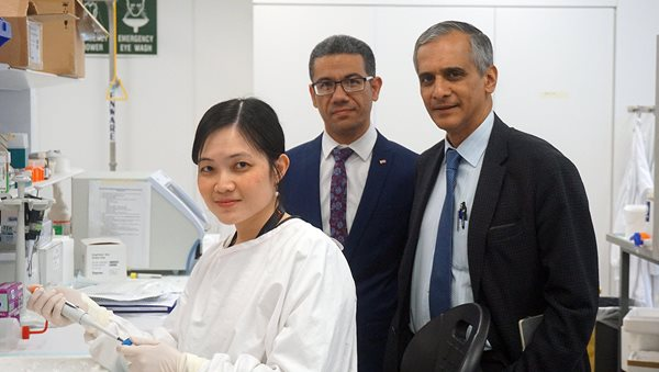 Left to right: First author Dr Fei Chen and lead researchers Associate Professor Mohammed Eslam and Professor Jacob George. Image credit: WIMR