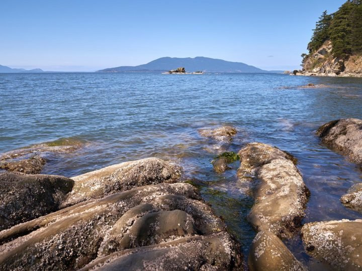 This view of the Salish Sea is from the shoreline of Larrabee State Park, looking out into Samish Bay near Bellingham, Wash. Image credit: PNNL