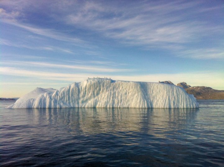 In addition to their important role as carbon sinks, scientists showed that icebergs can be crucial players in the preservation of marine productivity. Image credit: Dr Jon Hawkings, FSU