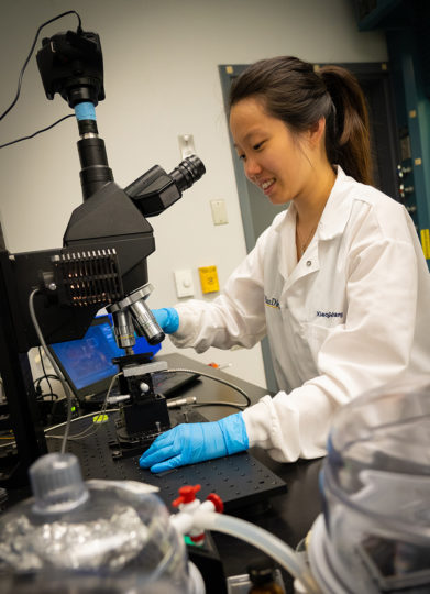 Chawina De-Eknamkul in the process of building an atomically thin waveguide. Image credit: UCSD
