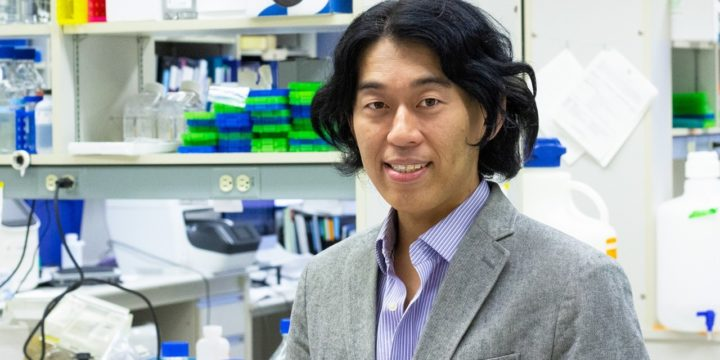 U of A medical geneticist Toshifumi Yokota is testing a new treatment for Duchenne muscular dystrophy that acts like a stitch to repair a genetic mutation in patients with the debilitating disease. (Photo: Jordan Carson/University of Alberta)