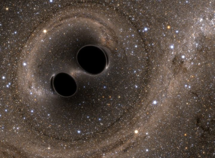Simulation of the black hole merger observed by LIGO known as GW150914. Credit: SXS, the Simulating eXtreme Spacetimes (SXS) project