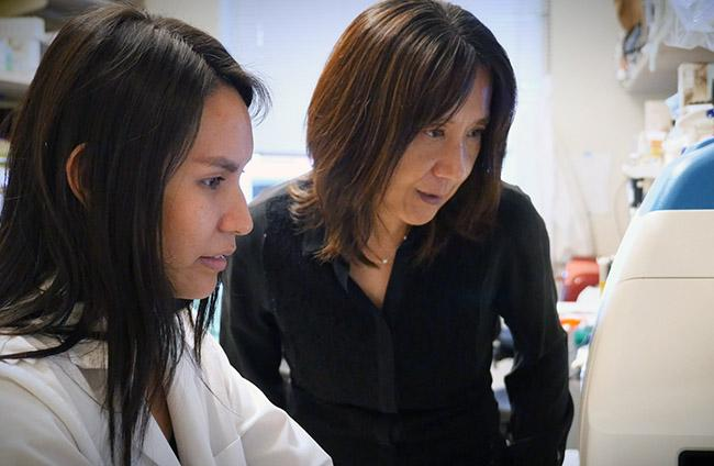 Dr. Rong Tian (rignt) goes over data in a mitochondrial research lab with UW Medicine biochemistry graduate student Arianne Caudal. Image credit: Randy Carnell/UW Medicine