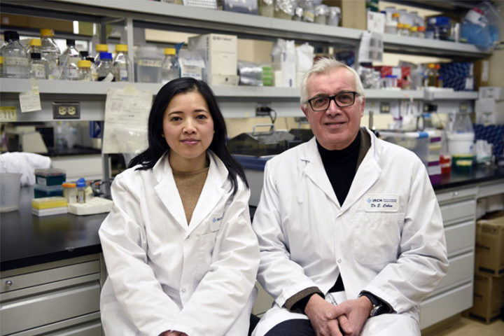 Éric A. Cohen and Tram NQ Pham in their lab at the IRCM. Credit: IRCM