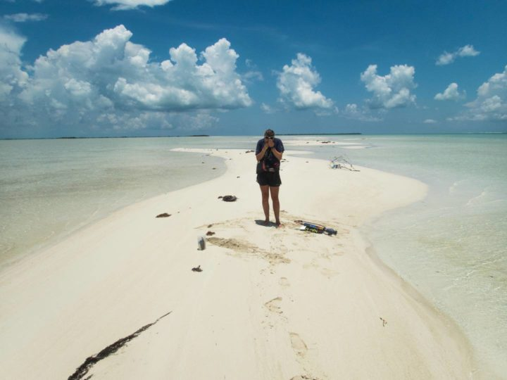 Emily Geyman, who graduated from Princeton in 2019 with a bachelor's degree in geosciences, is the lead author of a scientific paper that stems from her senior thesis research on how carbonates record the global carbon cycle. Shown, Geyman on the sand shoals of Andros Island in the Bahamas, where she studied ooids, small sedimentary grains composed of calcium carbonate. These very small particles form on the sea floor of shallow, tropical seas and provide clues to past climatic conditions. Photo courtesy of Emily Geyman, Princeton University