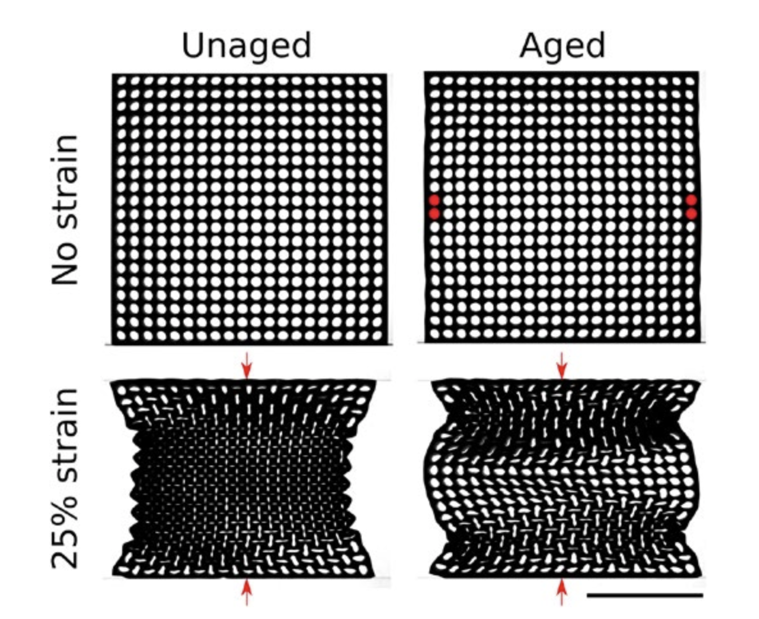 Researchers use a materials memory to encode unique physical properties