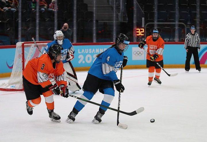 Artificial intelligence could help analyzing ice hockey players.